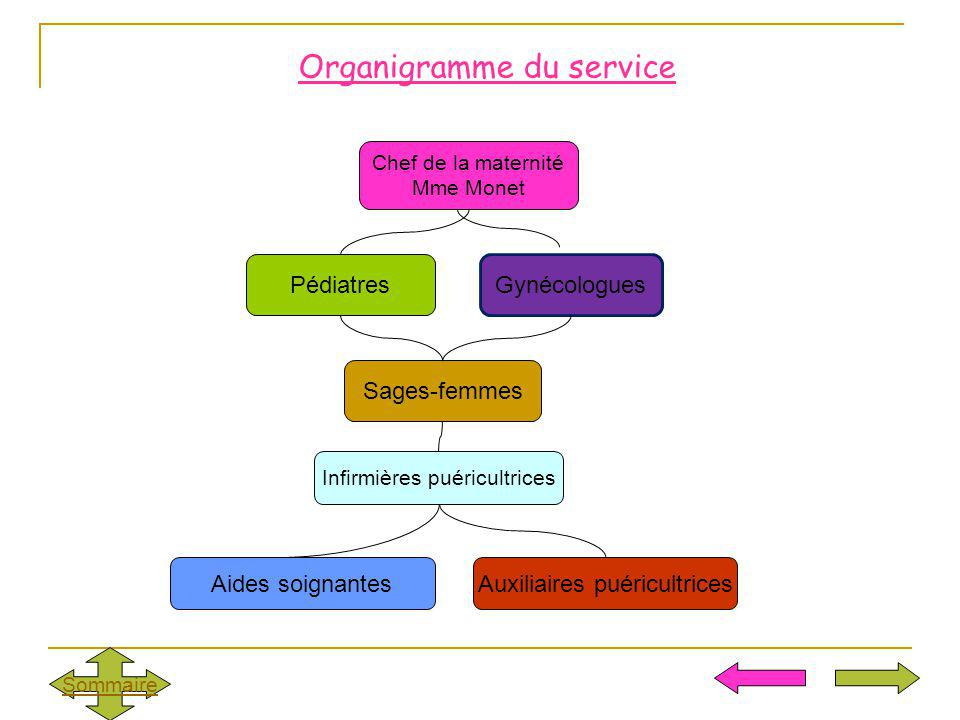 Organigramme du service