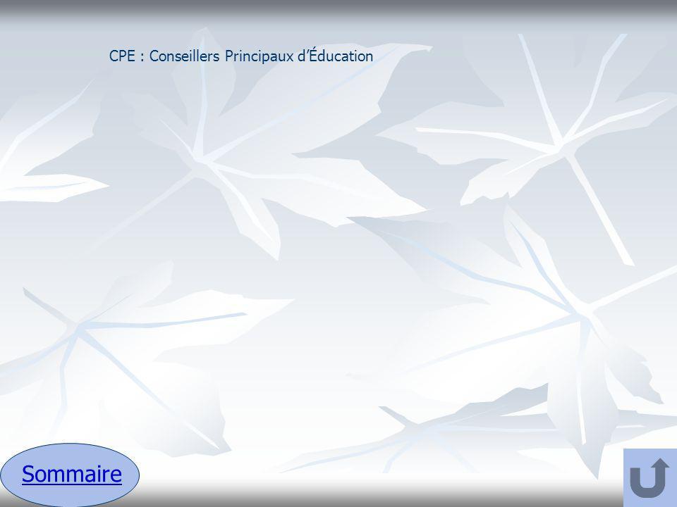CPE : Conseillers Principaux d'Éducation