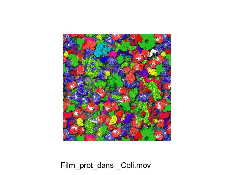 Film_prot_dans _Coli.mov