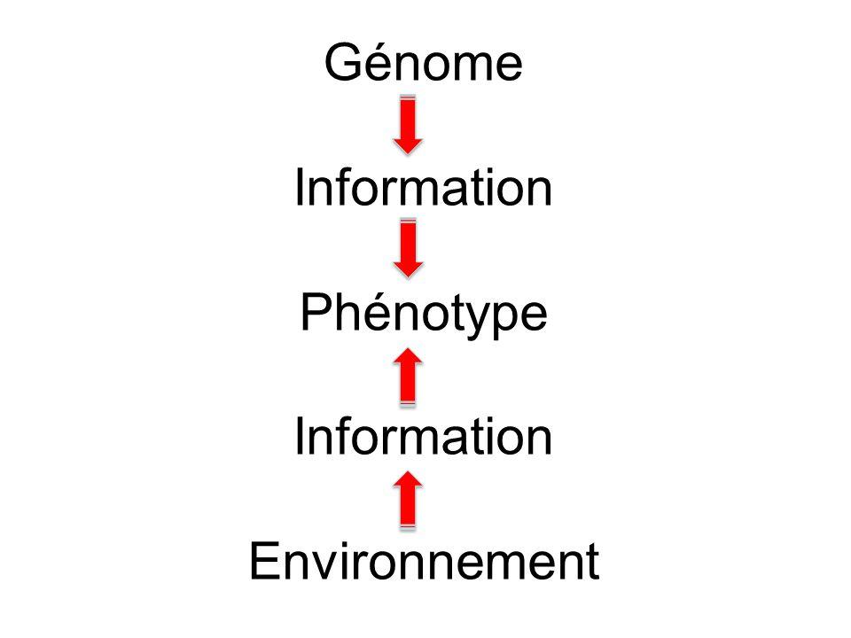 Génome Information Phénotype Environnement