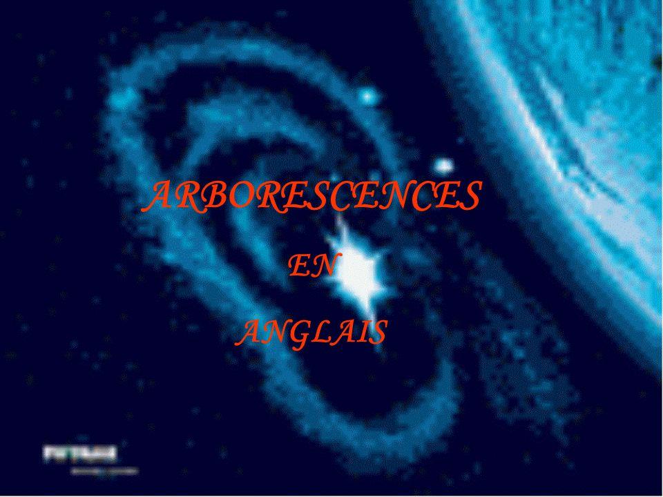 ARBORESCENCES EN ANGLAIS