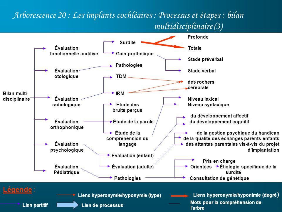 Arborescence 20 : Les implants cochléaires : Processus et étapes : bilan multidisciplinaire (3)