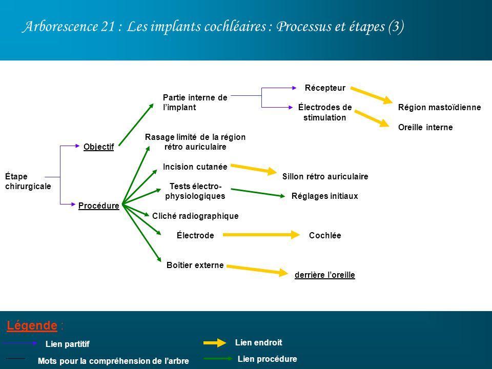 Arborescence 21 : Les implants cochléaires : Processus et étapes (3)