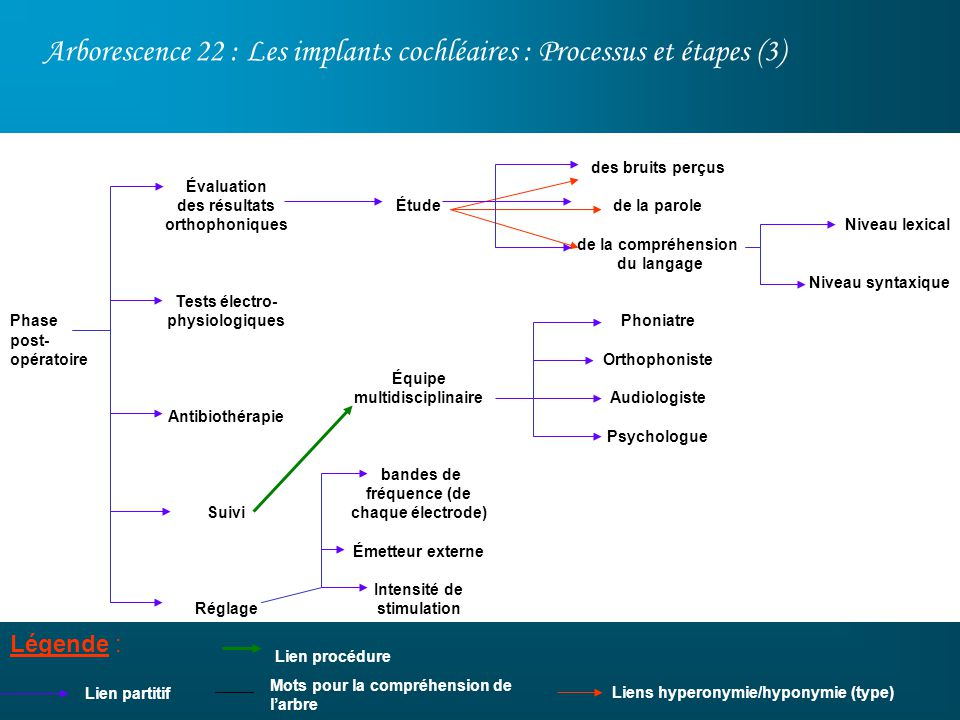 Arborescence 22 : Les implants cochléaires : Processus et étapes (3)