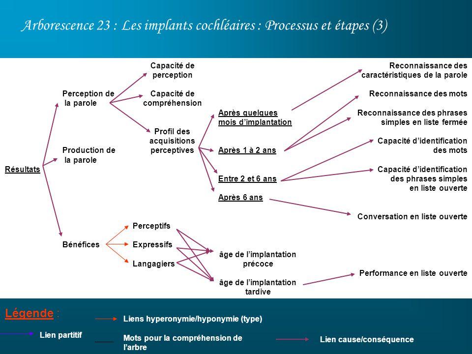 Arborescence 23 : Les implants cochléaires : Processus et étapes (3)