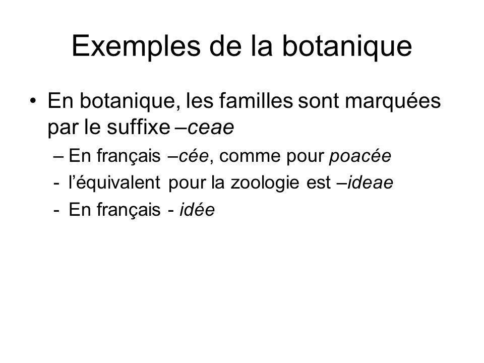 Exemples de la botanique