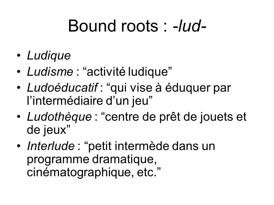 Bound roots : -lud- Ludique Ludisme : activité ludique