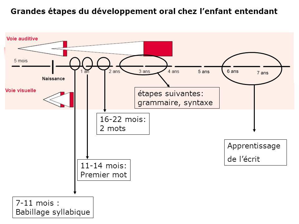 Grandes étapes du développement oral chez l'enfant entendant