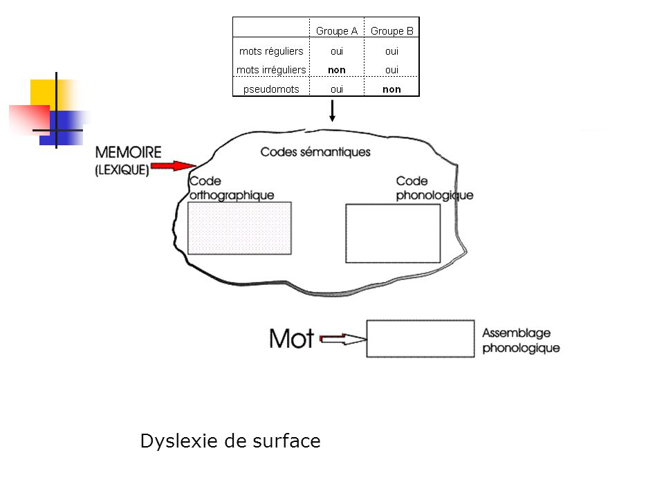 Dyslexie de surface