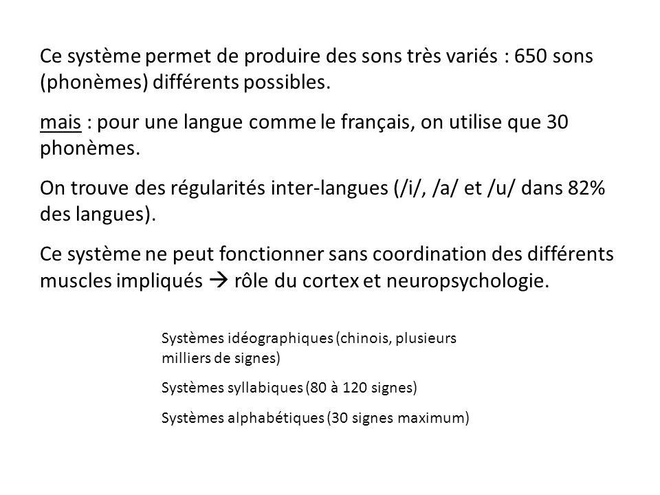mais : pour une langue comme le français, on utilise que 30 phonèmes.