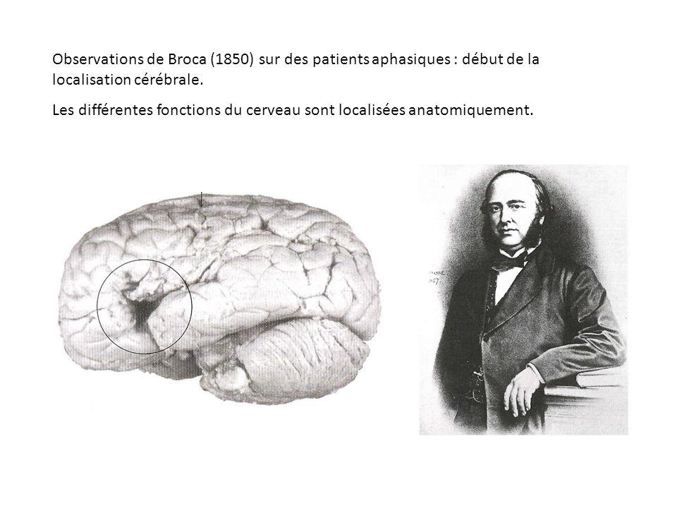 Observations de Broca (1850) sur des patients aphasiques : début de la localisation cérébrale.