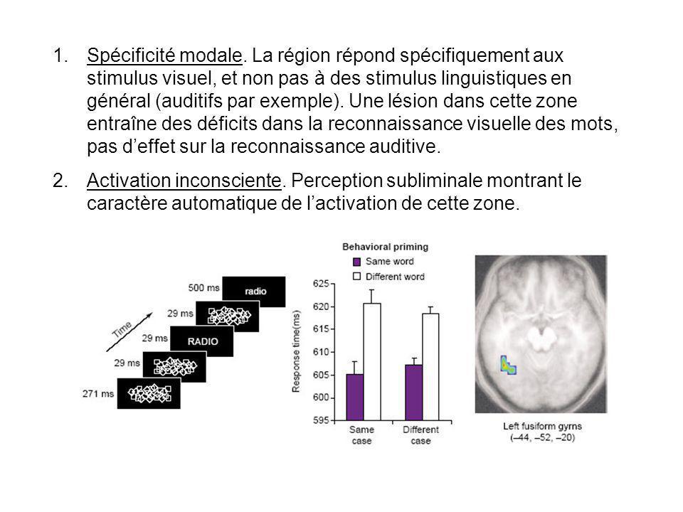 Spécificité modale. La région répond spécifiquement aux stimulus visuel, et non pas à des stimulus linguistiques en général (auditifs par exemple). Une lésion dans cette zone entraîne des déficits dans la reconnaissance visuelle des mots, pas d'effet sur la reconnaissance auditive.