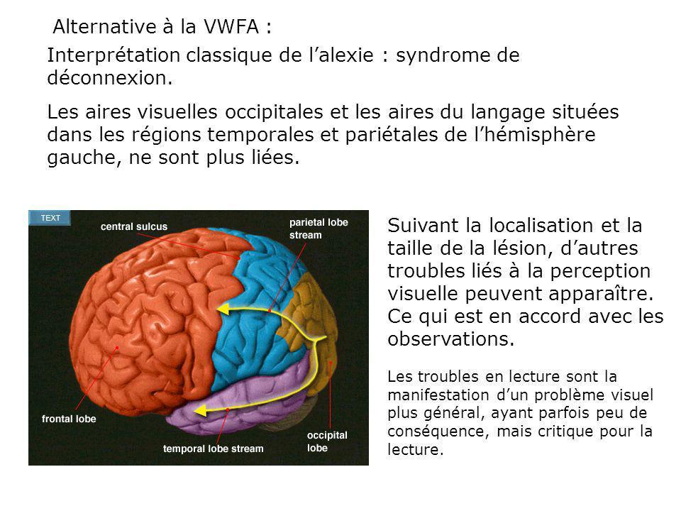 Interprétation classique de l'alexie : syndrome de déconnexion.
