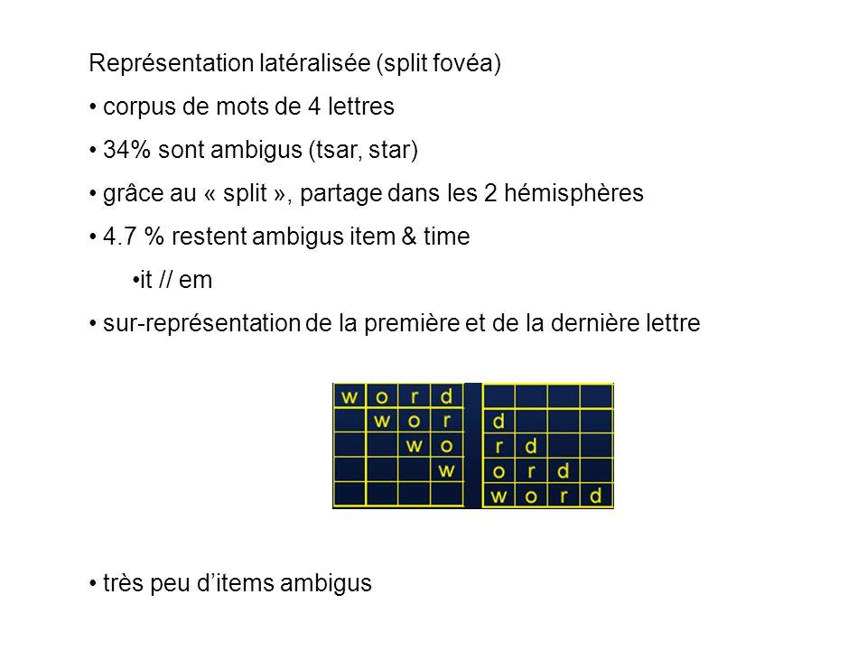 Représentation latéralisée (split fovéa)