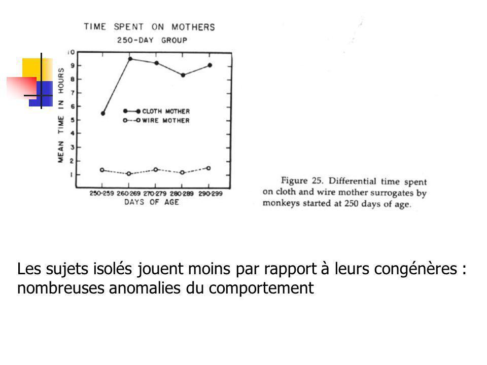 Les sujets isolés jouent moins par rapport à leurs congénères : nombreuses anomalies du comportement