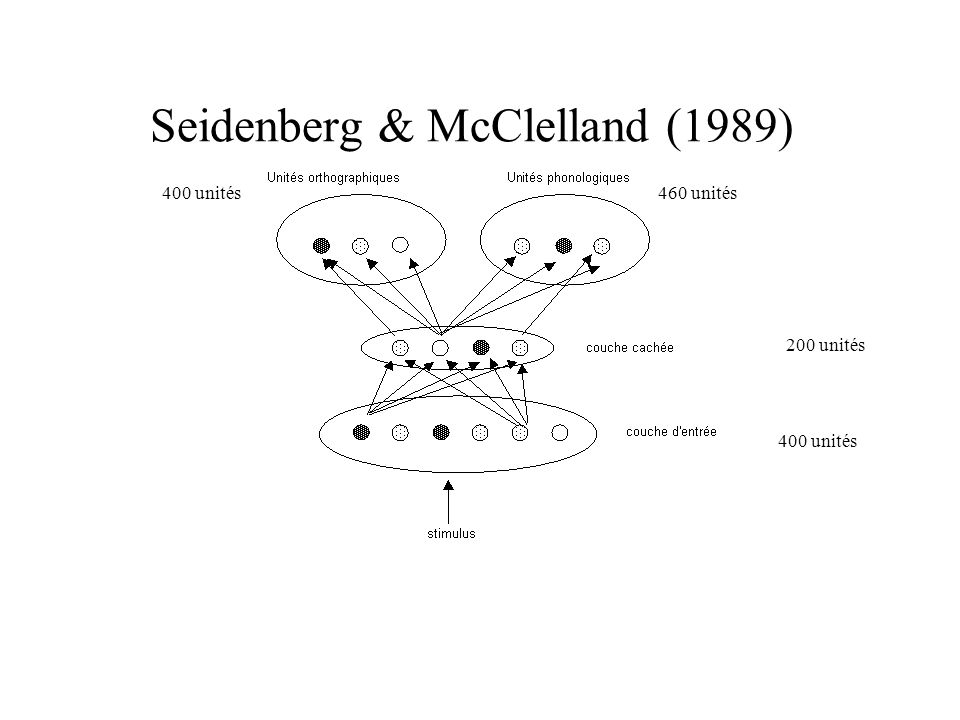 Seidenberg & McClelland (1989)