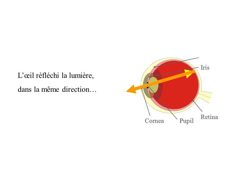 L'œil réfléchi la lumière, dans la même direction…