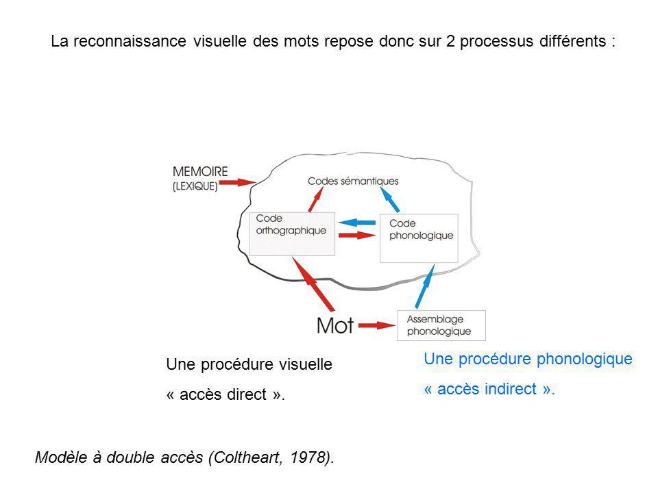 La reconnaissance visuelle des mots repose donc sur 2 processus différents :