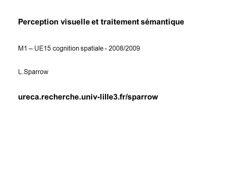 Perception visuelle et traitement sémantique