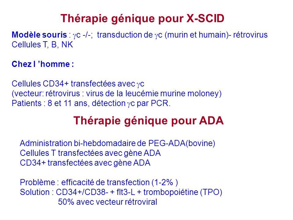 Thérapie génique pour X-SCID