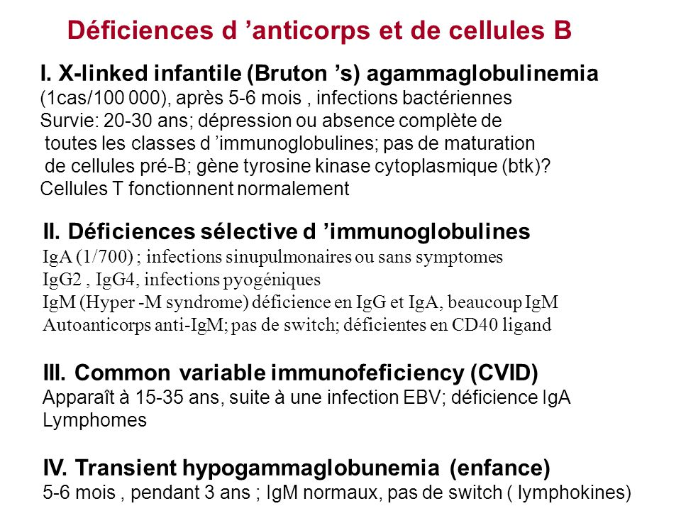 Déficiences d 'anticorps et de cellules B