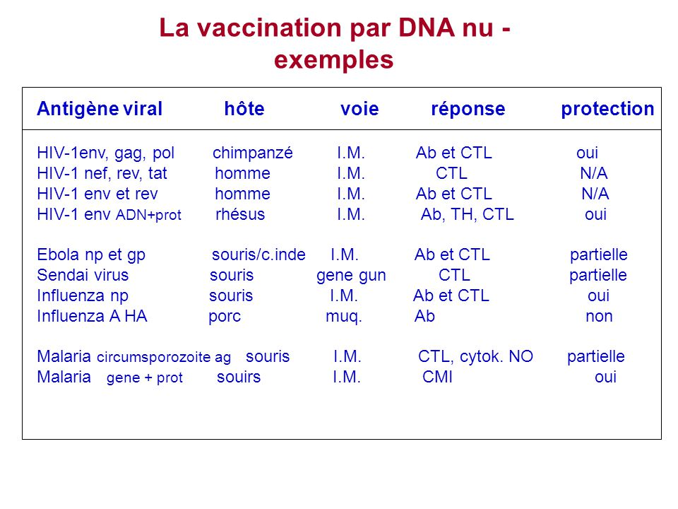 La vaccination par DNA nu -