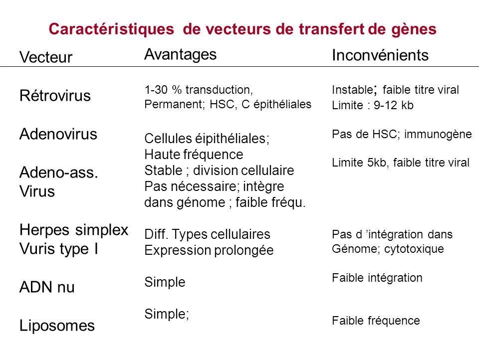 Caractéristiques de vecteurs de transfert de gènes