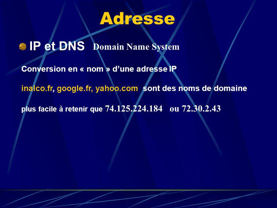 Adresse IP et DNS Domain Name System