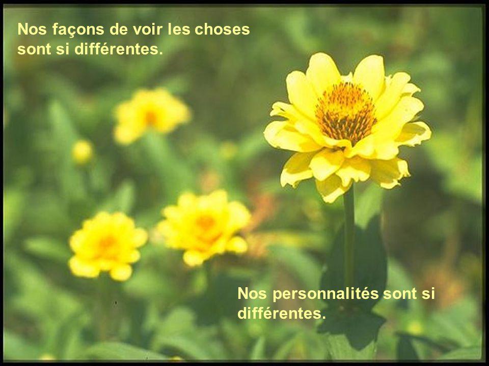Nos façons de voir les choses sont si différentes.