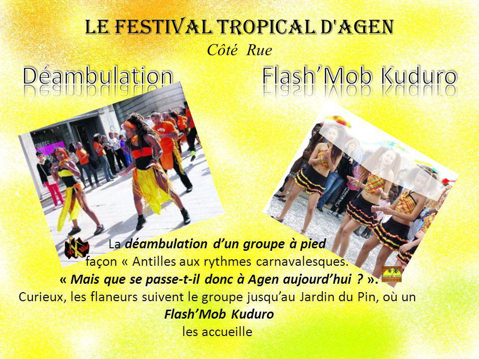 Le Festival Tropical d Agen Côté Rue Déambulation Flash'Mob Kuduro