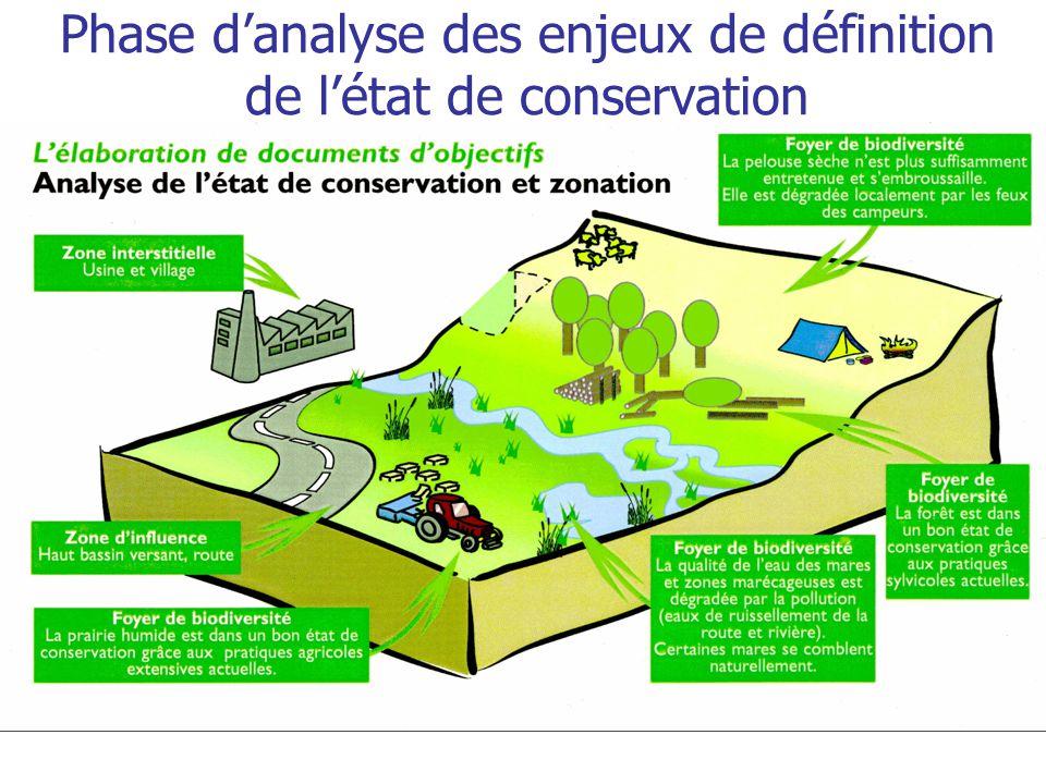 Phase d'analyse des enjeux de définition de l'état de conservation