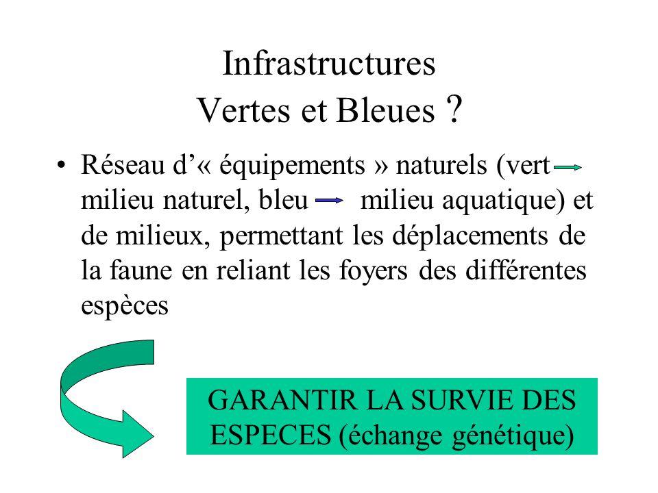 Infrastructures Vertes et Bleues