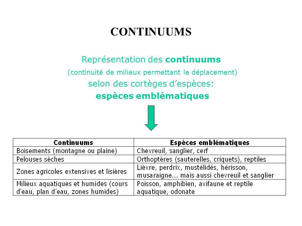 CONTINUUMS Représentation des continuums