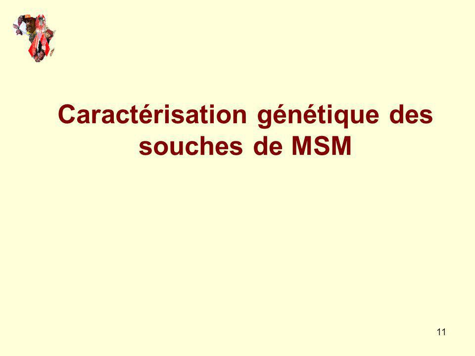 Caractérisation génétique des souches de MSM