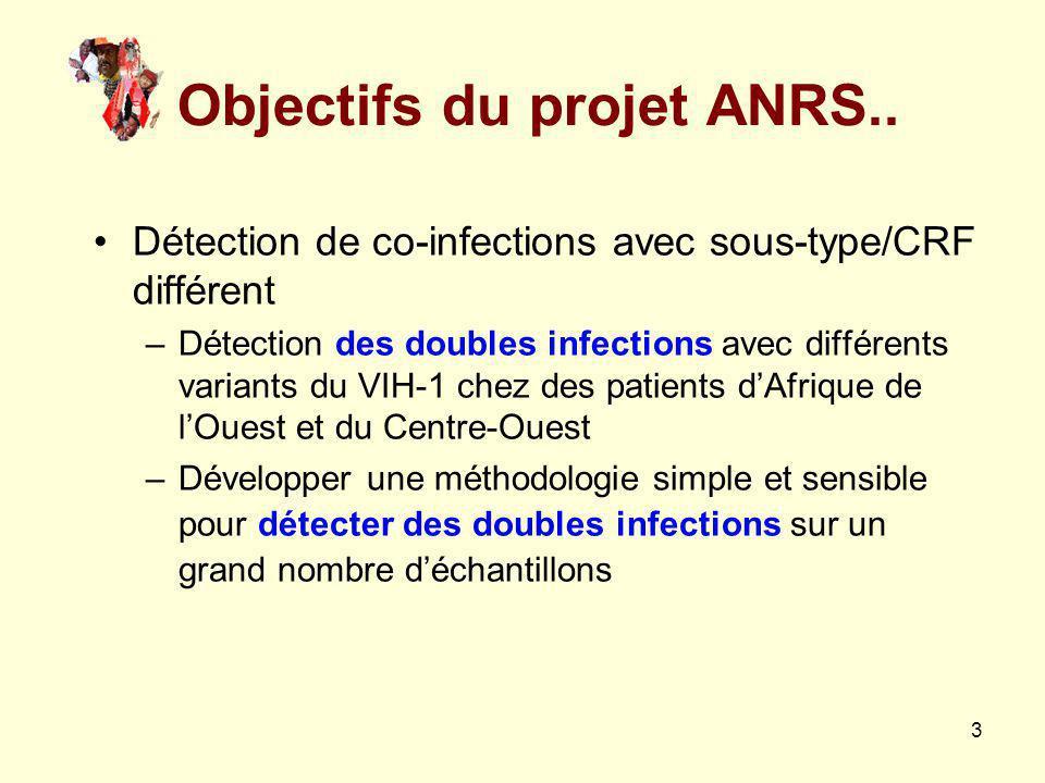 Objectifs du projet ANRS..