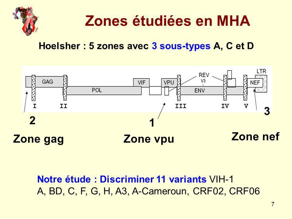Zones étudiées en MHA Zone vpu Zone gag Zone nef 1 2 3