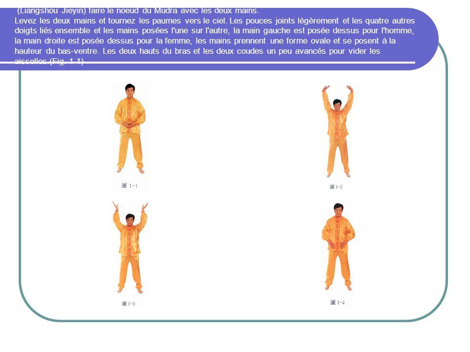 (Liangshou Jieyin) faire le noeud du Mudra avec les deux mains