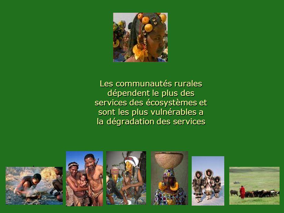 Les communautés rurales dépendent le plus des services des écosystèmes et sont les plus vulnérables a la dégradation des services