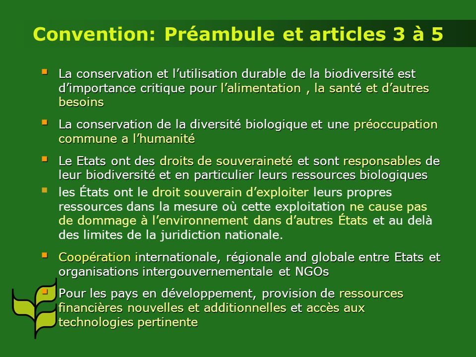 Convention: Préambule et articles 3 à 5