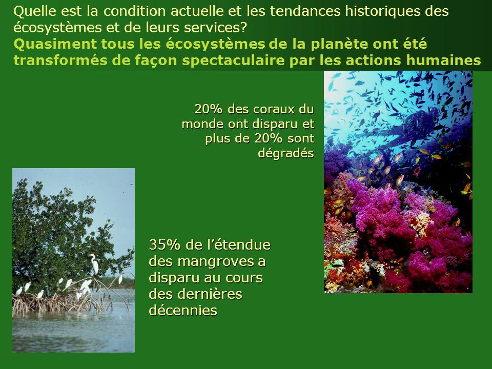 Quelle est la condition actuelle et les tendances historiques des écosystèmes et de leurs services Quasiment tous les écosystèmes de la planète ont été transformés de façon spectaculaire par les actions humaines