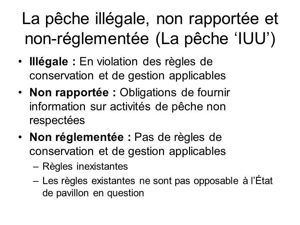 La pêche illégale, non rapportée et non-réglementée (La pêche 'IUU')