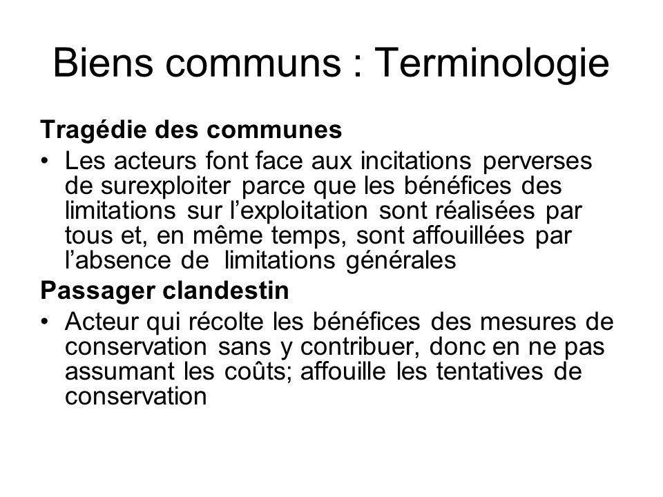Biens communs : Terminologie