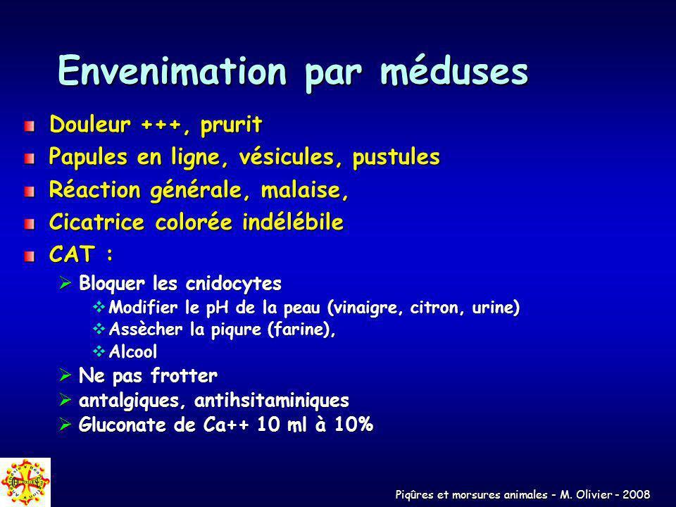Envenimation par méduses