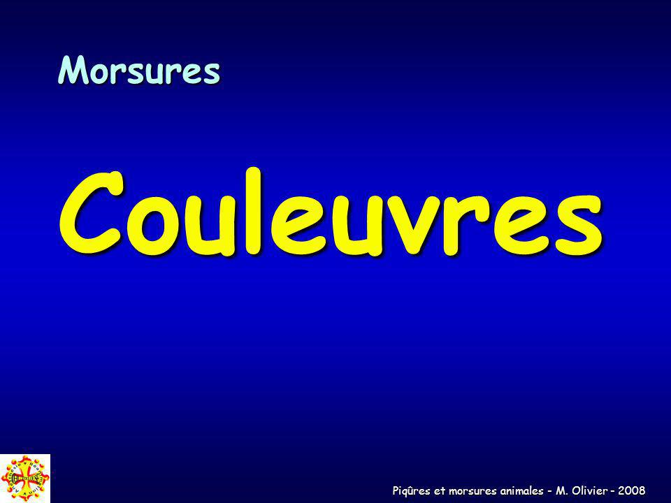 Morsures Couleuvres