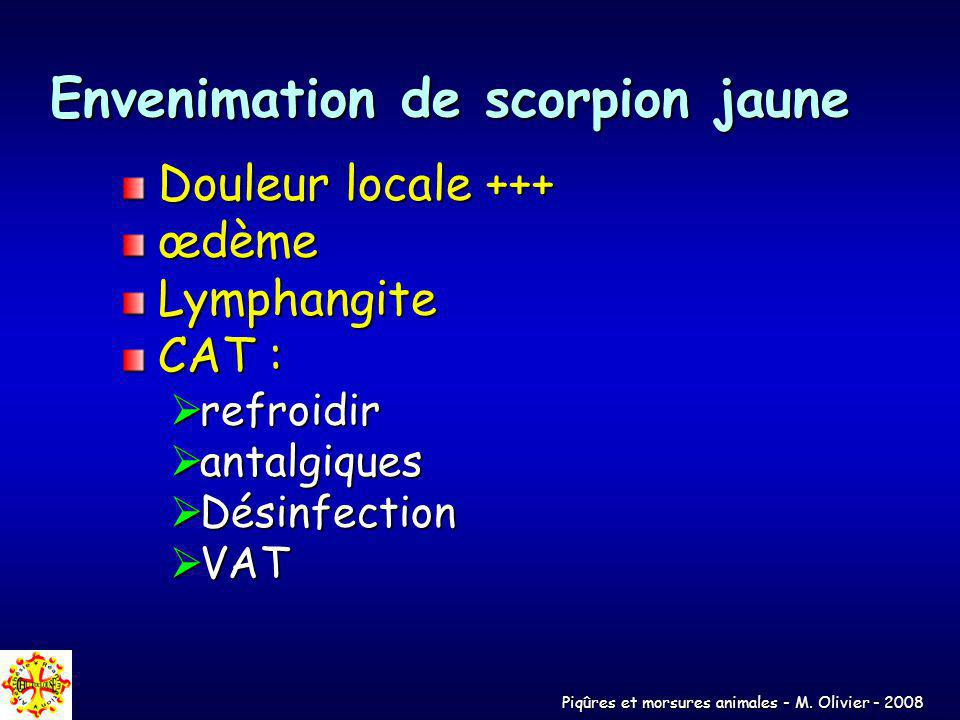 Envenimation de scorpion jaune