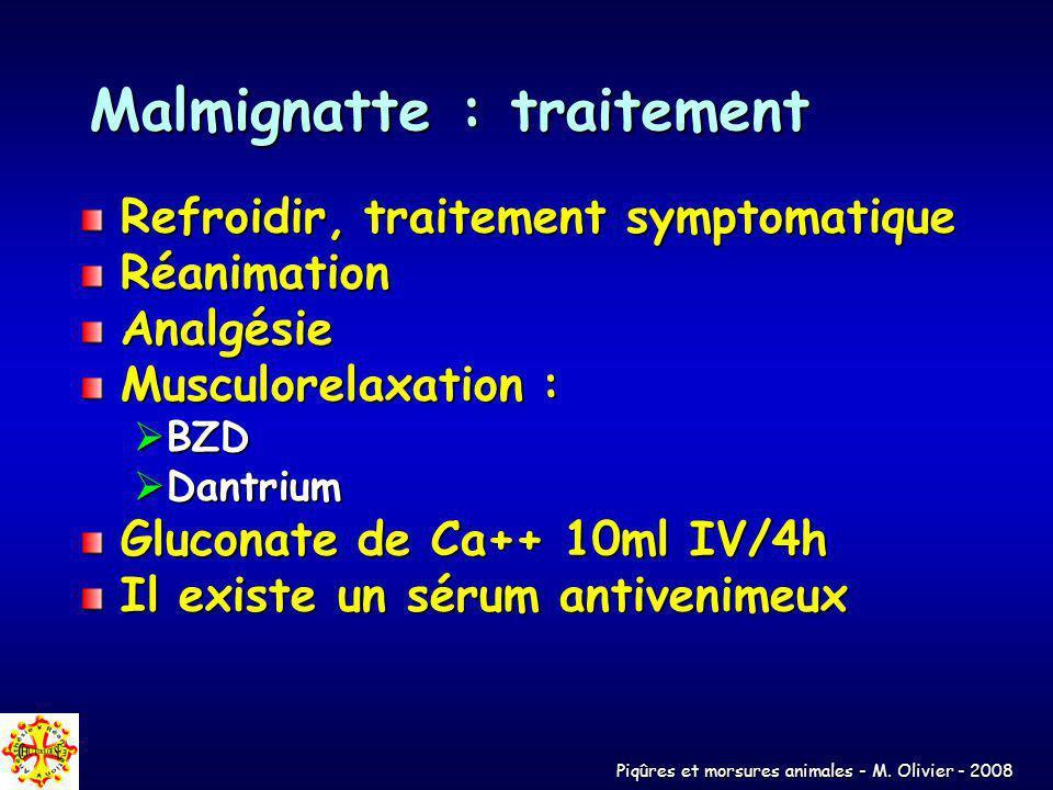 Malmignatte : traitement