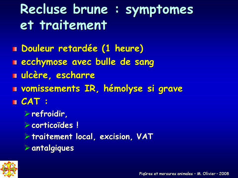 Recluse brune : symptomes et traitement