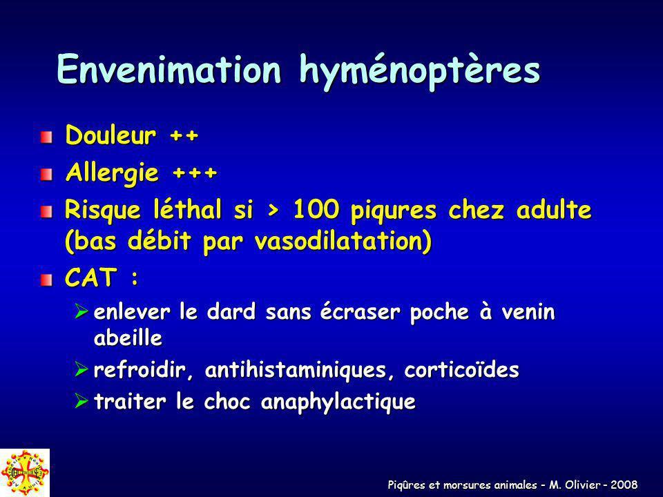 Envenimation hyménoptères