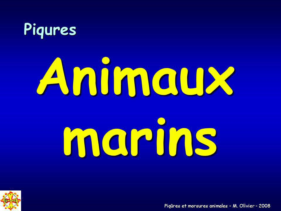 Piqures Animaux marins