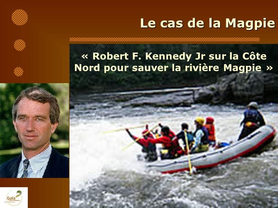 Le cas de la Magpie « Robert F. Kennedy Jr sur la Côte Nord pour sauver la rivière Magpie »